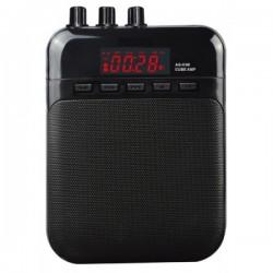 """Amplificador """"LEEM"""" bajo S35B"""